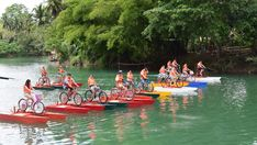 2019 Bohol Countryside Tour + Water Bike Tour (ALL-INN). Bohol Countryside Tour w/ entrance Fees Bohol, Countryside, Vacations, Tours, Bike, Water, Holidays, Bicycle, Gripe Water