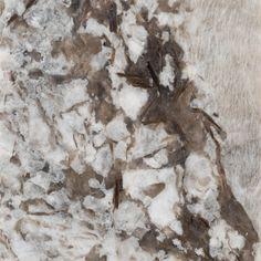Sample - Custom Countertop Bianco Antico Granite - 4 x 4 - 100200153 Types Of Kitchen Countertops, Custom Countertops, Granite Kitchen, Stone Countertops, Kitchen Reno, Kitchen Remodel, Kitchen Design, Kitchen Ideas, Granite Flooring
