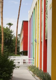 Palm Springs - The Saguaro Hotel Palm Springs Houses, Coachella Valley, Wish You Are Here, Color Stories, Meeting New People, Spring Break, Cool Furniture, Color Inspiration, The Good Place