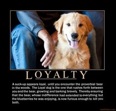 Dog loyalty quotes - photo#5