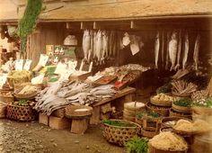 08. 横浜で鰹節と野菜を売る商店 撮影: 江波信國