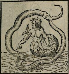 Alciati Andrea - 1542