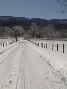 #Cades #Cove in the snow