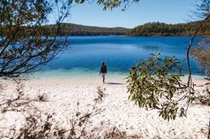 Shore thing: Fraser Island is the largest sand island in the world Sand Island, Fraser Island, The Sunday Times, Happy Valley, Things To Do, Trail, Coast, Waves, World