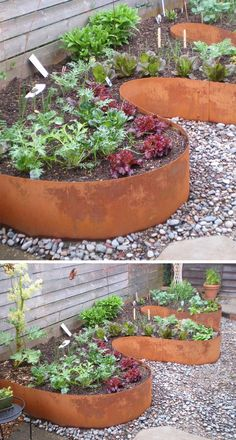 9 Ideas For Including Weathering Steel Planters In Your Garden // These planters made from curved sheets of weathered steel, add dimension and create extra space for more plants without being boxy.