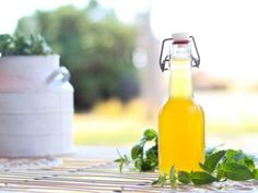 This simple mint extract recipe will rock your world! And it's a fabulous way to use up and enjoy your fresh mint. Homemade Vanilla Extract, Homemade Syrup, Mint Syrup Recipe, Orange Juice Cocktails, Mint Iced Tea, Mint Simple Syrup, Mint Extract, Little Gardens, Hot Sauce Bottles