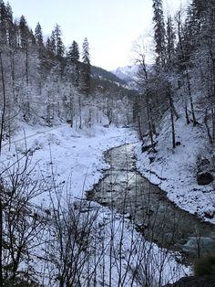 Garmisch Partenkirchen #bringlearngrow #familytravel #familyvacation ✈️ #travel #kidstravel 👫 #packyourbagskids  #austinblogger #travelwithkids #ski #austintravelblogger #servecation  #christmas #traveltips #germany #italy #skieurope #garmisch Travel With Kids, Family Travel, Ski Europe, Pack Your Bags, Skiing, Travel Tips, Germany, Bring It On, Italy