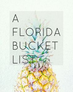 We Took the Road Less Traveled: A Florida Bucket List