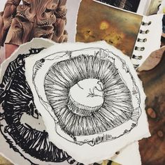 Drawing of a mushroom for my unit 1 AS-decay Textiles Sketchbook, Sketchbook Pages, Decay Art, A Level Textiles, Observational Drawing, Creative Textiles, Mushroom Art, Art Folder, A Level Art