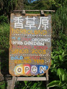 Seafood Yum: Lamma Island Hong Kong
