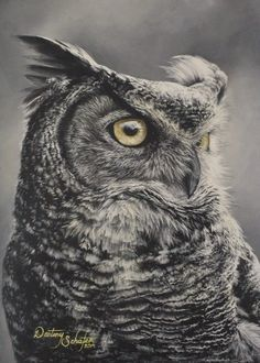 Owl painting by gimgams on DeviantArt