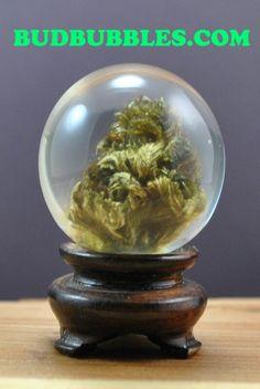 REAL MARIJUANA BUD encapsulated in a crystal clear resin botanical sphere pendant. budbubbles.com