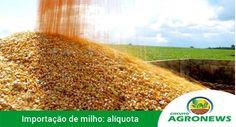 LEIA NOTÍCIAS DO AGRONEGÓCIO NO CIRCUITO AGRONEWS