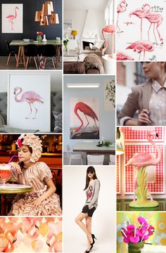 Mood Board Monday: Flamingos (http://blog.hgtv.com/design/2013/06/10/mood-board-monday-flamingos/?soc=pinterest)