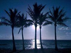 blue sky, blue waters...