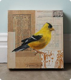 Yellow Bird by Tom Judd via Anthro. I could add this to my Anthro knock off list. Art Du Collage, Mixed Media Collage, Painting Collage, Collages, Photocollage, Altered Art, Home Art, Art Journals, Paper Art