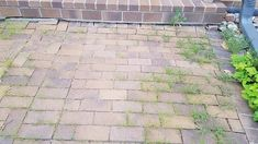 Brick Walkway, Brick Path, Front Walkway, Concrete Driveways, Concrete Patio, Outdoor Patio Pavers, Polymeric Sand, Paver Sand, Interlocking Bricks