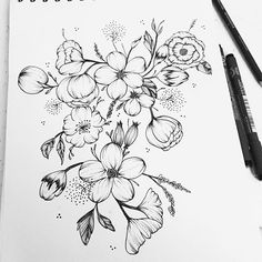 Flower Drawing Botanical Illustration In 2019 Pinterest