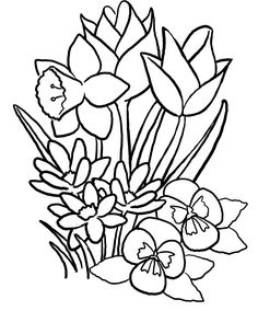 The Lush Spring Flowers Coloring Pages