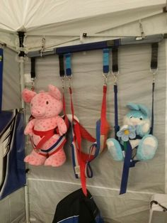Pig and bunny just hanging with us at our booth at the #torontoboatshow. #horizonparasailinc