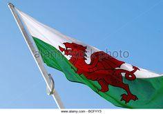 welsh-flag-flying-high-no-2720-bcfyy5.jpg (640×449)