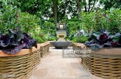 Image result for raised bed gardens for seniors