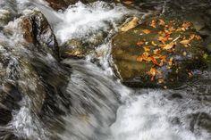 Río otoñal by Patxi de Linaza López