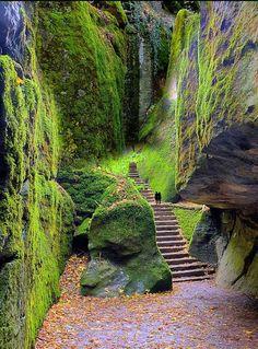 Steps leading to La Verna, Tuscany, Italy (Franciscan sanctuary)...