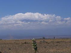 kilimanjaro in clouds