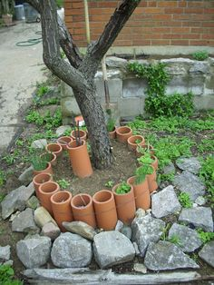 clay pipe planter