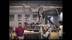 "Behind the scenes of JURASSIC PARK. JURASSIC PARK Spitter (Dilophosaurus) ""hopping rig"" rehearsal at SWS, with Rick Galinson, Shane Mahan and Mark Jurinko."