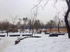 보라매공원