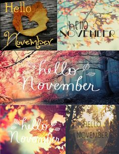 Image discovered by ༄Lotta༄. Find images and videos on We Heart It - the app to get lost in what you love. Hallo November, Welcome November, Sweet November, Hello December, November Images, November Pictures, November Quotes, Seasons Months, Months In A Year