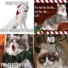 No jolly from Grumpy Cat