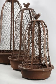 Wire cloches. These are bird cages  a bit $$ but if you're planning a wedding or looking for unusual stuff, try looking here.