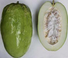 Propiedades y beneficios del consumo de la badea