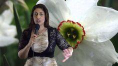 Libra April 2014 Monthly Astrology Horoscopes by Nadiya Shah (+playlist)