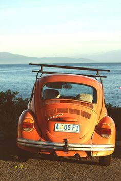 few things better than an orange bug and the ocean