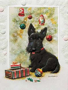 Scottish Terrier Boxed Christmas Cards Pumpernickle Press,http://www.amazon.com/dp/B0056HLJ5M/ref=cm_sw_r_pi_dp_w-qptb0VTG305H66