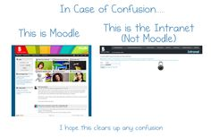 Moodle Not Moodle Confused