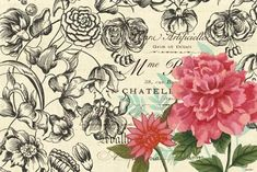 Vintage Toile Flowers-horizontal 4 by Jennifer Brinley | Ruth Levison Design