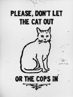 Queer Anarchism — not made by me, source unknown Crazy Cat Lady, Crazy Cats, Slytherin, Acab Tattoo, Tattoos, Cat Art, Art Inspo, Inspire Me, Street Art