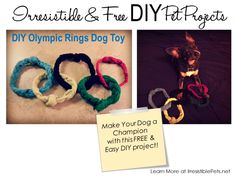 Irresistible and Free DIY Pet Projects: DIY Olympic Rings Dog Toy - Irresistible Pets Animal Projects, Animal Crafts, Diy Projects, Diy Puppy Toys, Zoo Crafts, Pet Odors, Toy Puppies, Happy Animals