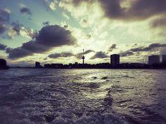 Rotterdam mit dem Wassertaxi. © Elke Weiler