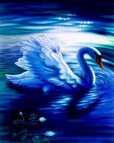 Shadow swan sue dawe