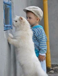 Kids and cats