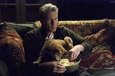 Hachiko Richard Gere, Hachi A Dogs Tale, Teaching Us History, A Dog's Tale, The Shape Of Water, Why I Love Him, Dog Best Friend, Akita Dog, Cute Dog Photos