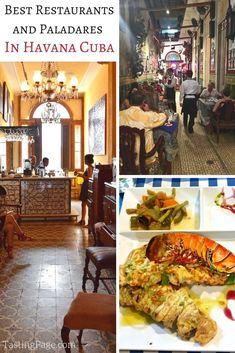Best restaurants and paladares in Havana Cuba & what Cuban food is like in Cuba | TastingPage.com #havana #cuba #travel