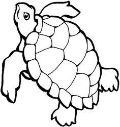 Turtle Outline Clip Art | turtle