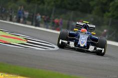 Felipe Nasr, Sauber, Silverstone, 2016
